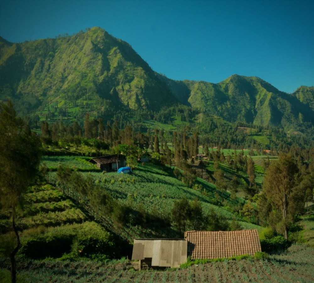 4D3N Mount Bromo Sunrise Tour Price For Malaysia And Singapore