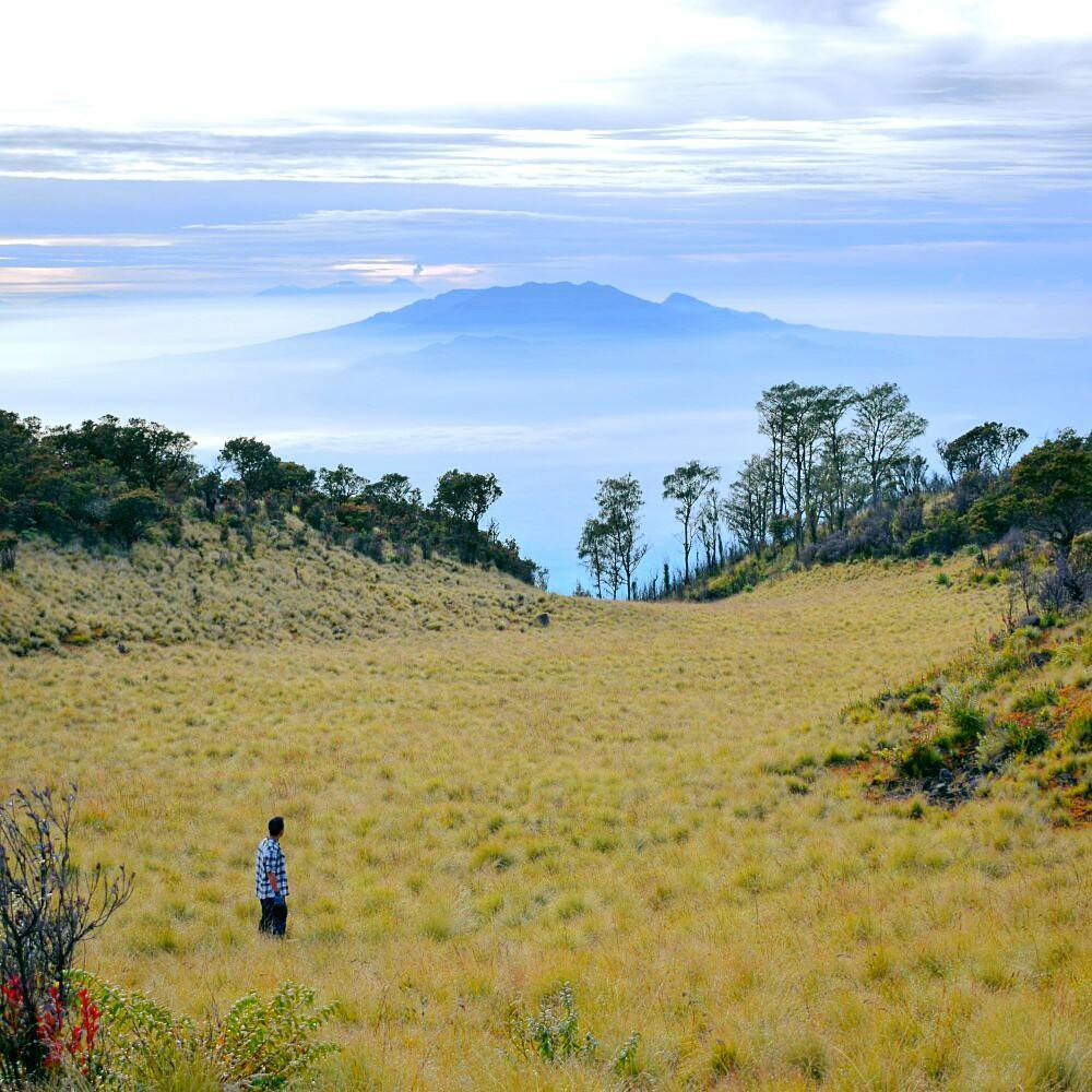 East Java, Surabaya mountain trekking and hiking trails_mount Lawu 2