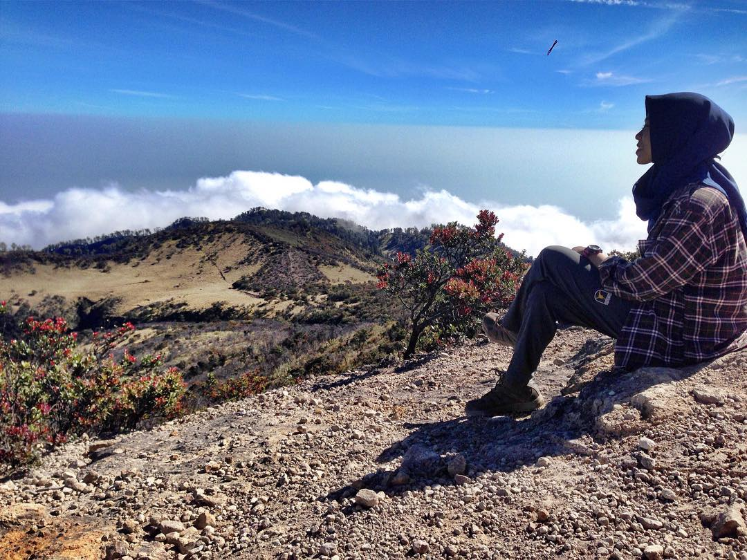 East Java, Surabaya mountain trekking and hiking trails_mount Lawu 3
