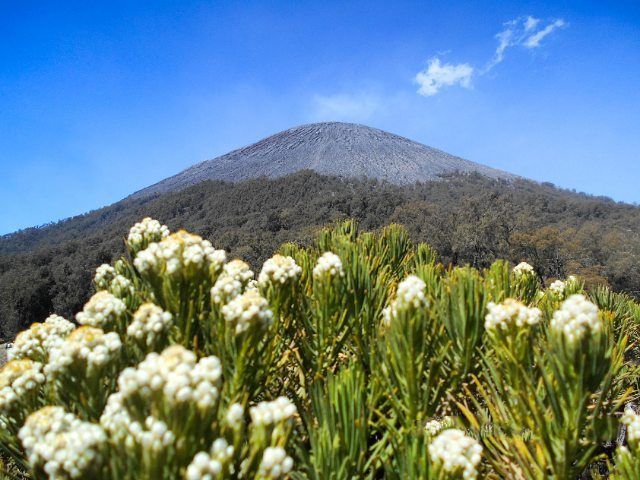 East Java, Surabaya mountain trekking and hiking trails_mount Semeru 1