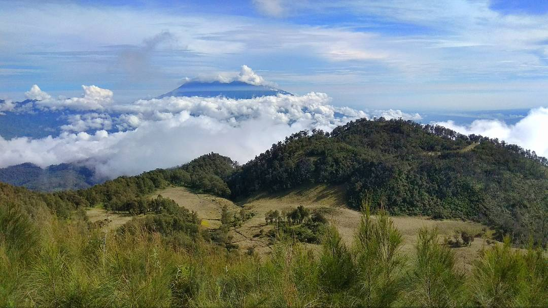 East Java, Surabaya mountain trekking and hiking trails_mount Butak 1